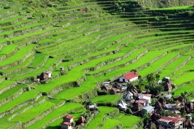 Featured Photo: Batad Rice Terraces, The Philippines