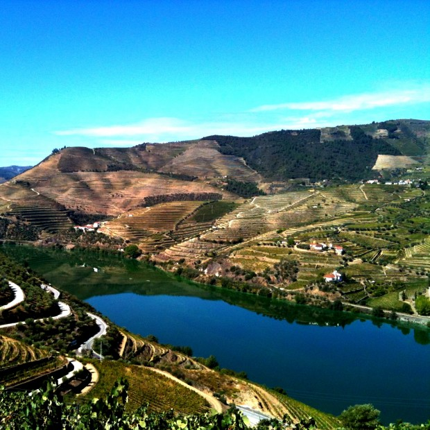 Porto's stunning Douro valley. What a view!