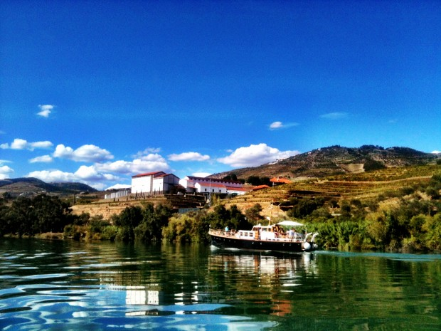 View from the boat along the Douro, near Pinhão.