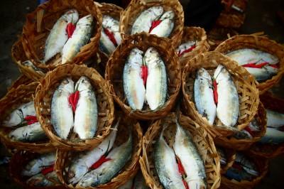 fish market vietnam